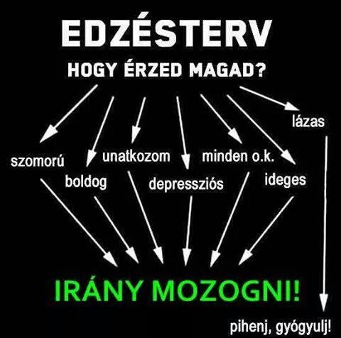 edzes_1422304367